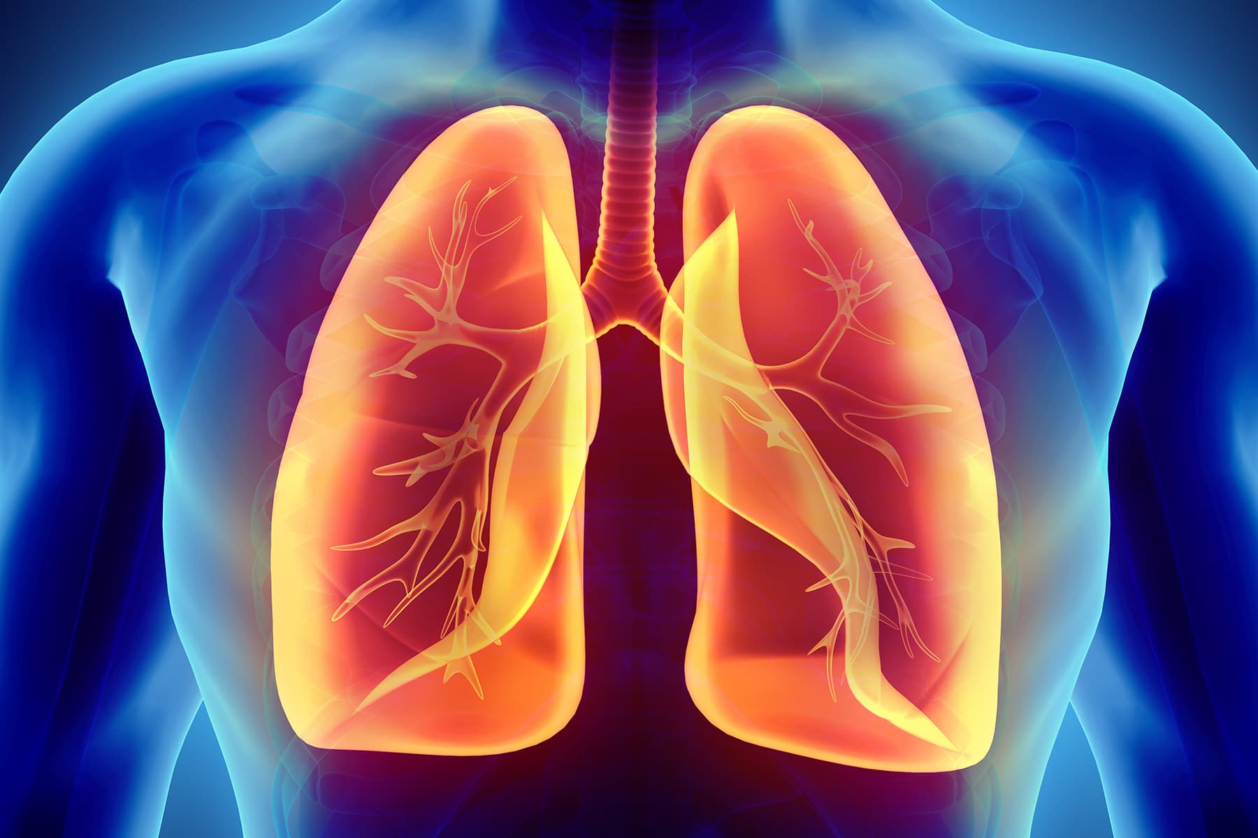 Read more about the article Lungs And COVID-19: VitaPost Lung Support